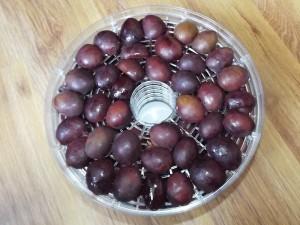 plums01