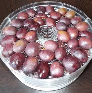 plums02