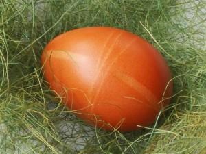 eggs_06