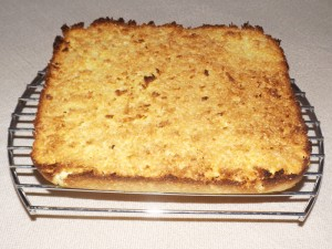 tropical_coconut_bars_01